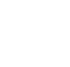 Guiness world records